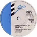 Owen Paul - Pleased To Meet You (7